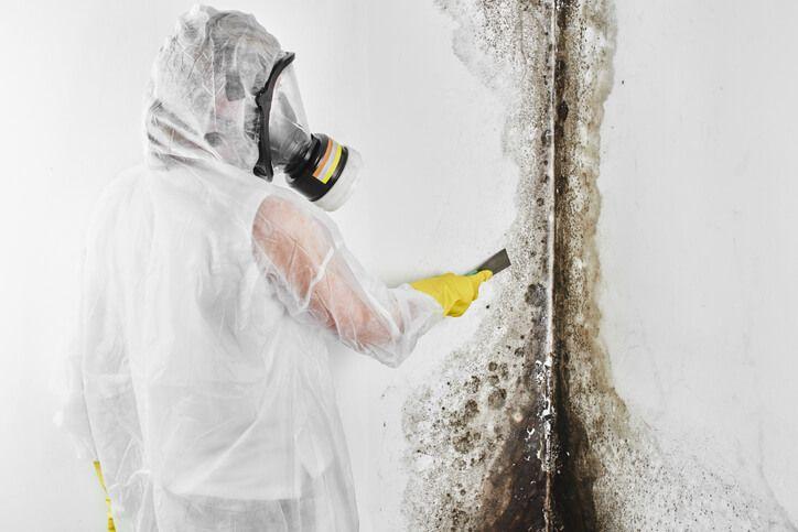 Do Ozone Generators Kill Mold? [Answered 2021]